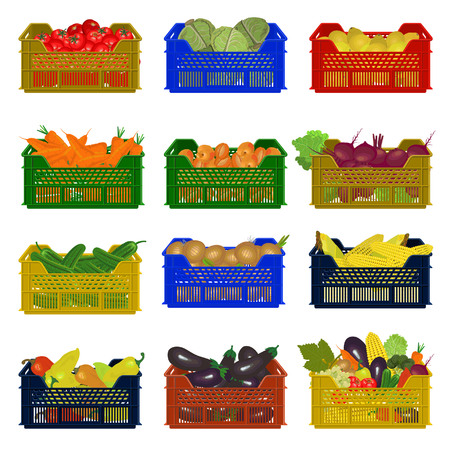 Boîtes en plastique avec des légumes. Illustration vectorielle Banque d'images - 85466527