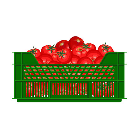 Plastic crate with tomatoes. Vector illustration