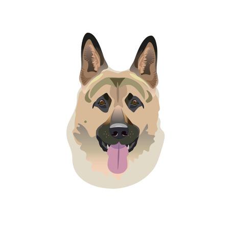 German shepherd dog. Vector Illustrated Illustration
