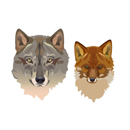 Wolf head and fox head. Vector illustration