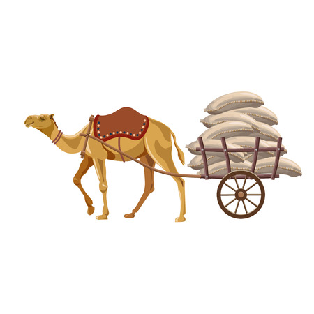 Camel puling cart with sacks. Vector illustration isolated on white background