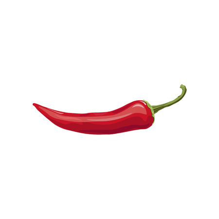 Chili pepper isolated on a white background. Vector illustration