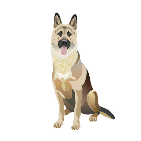 East european shepherd dog sitting in front of a white background. Vector illustration