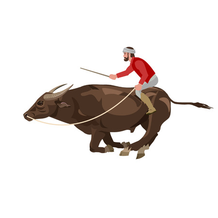 Bull racing. Vector illustration isolated on the white background