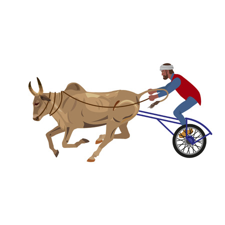 Bullock cart race. Vector illustration isolated on the white background Illustration