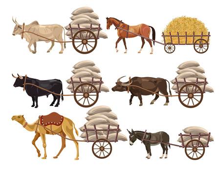 Set of animal-powered transport. Vector illustration