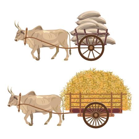 Toro cebú tirando de un carro cargado con sacos y heno. Ilustración vectorial