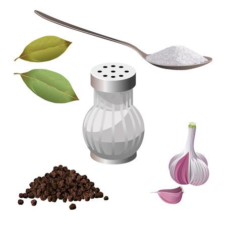스파이스 세트 : 소금, 설탕, 후추, 마늘, 베이 리프. 벡터 일러스트 레이 션
