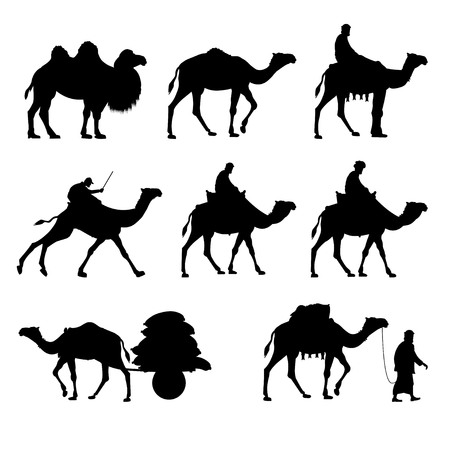 working: Set of vector camels. Black silhouettes isolated on white background