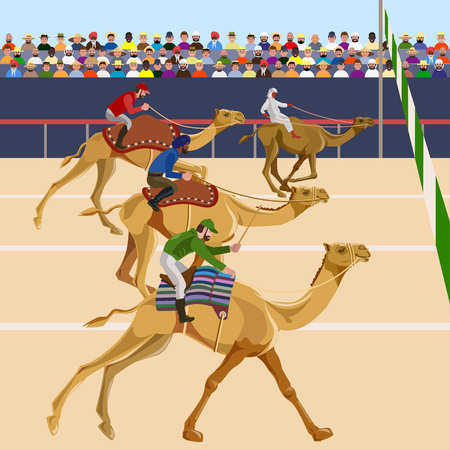 Camel racing. Vector illustration Illustration