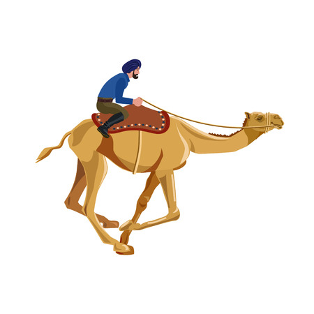 Indian man riding a camel. Vector illustration. Isolated on a white background Illustration
