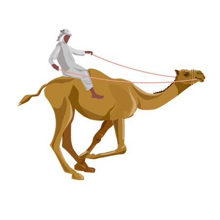 Arabic man riding a camel. Vector illustration. Isolated on a white background.