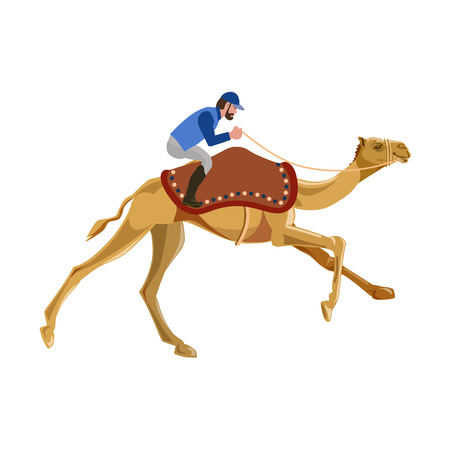 Jockey on a camel. Vector illustration isolated on a white background