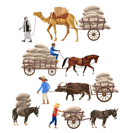 Set of vector vehicles with draft animals: camel, horse, water buffalo, and donkey. Vector illustration 向量圖像