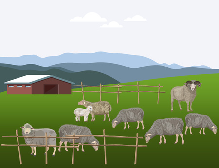 Sheep grazing on pasture. Vector illustration  イラスト・ベクター素材