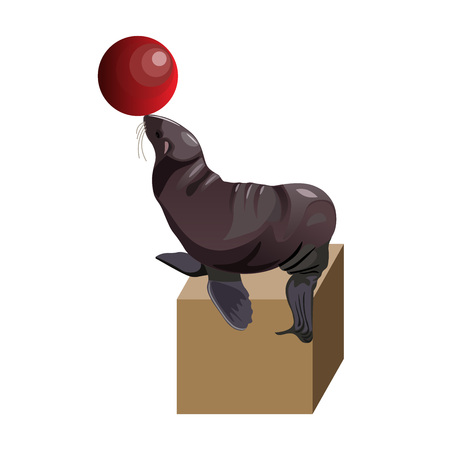 Fur seal playing with ball. Vector illustration isolated on white background Illustration