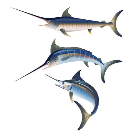 Ensemble de pêche au marlin. Illustration vectorielle isolée sur fond blanc Vecteurs