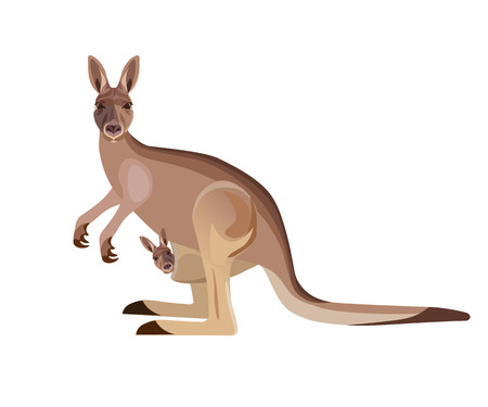 Kangaroo mother carrying a baby in its pouch. Vector illustration isolated on the white background