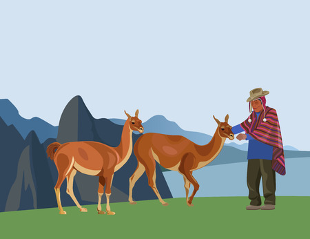 Peruvian man in national dress and guanacos against the background of mountains . Vector illustration