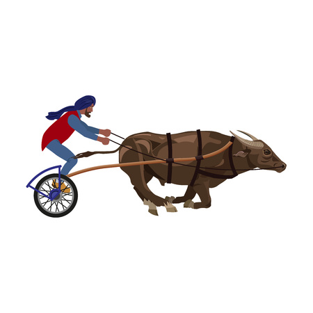 Bullock cart race. Bull and jockey. Vector illustration isolated on the white background