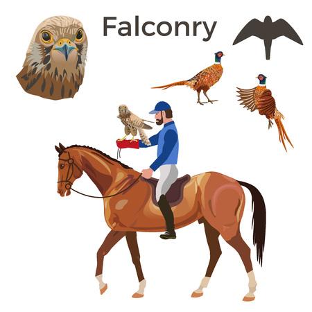 Falcon hunting set. Vector illustration isolated on white background. Illustration