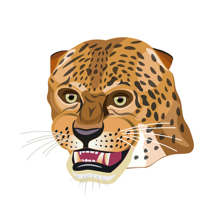 Portrait of a grinning leopard. Vector illustration isolated on the white background.