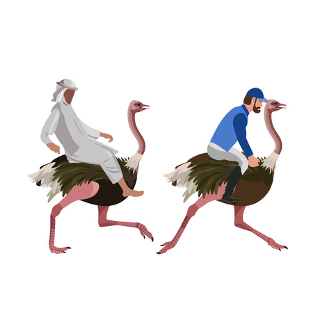 Ostrich racing. Vector illustration isolated on the white background.