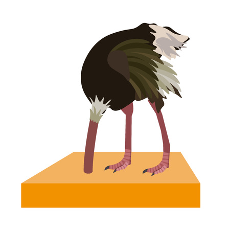 Ostrich hide head in sand. Vector illustration isolated on the white background. Illustration