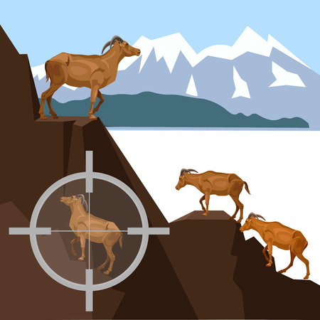 Herd of wild goats in the mountains. Target seen in the cross-hairs of the scope of a rifle. Vector illustration.