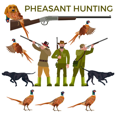 Set of vector illustration for pheasant hunting - hunters, hunting dogs and pheasants. Vector isolated on the white background.