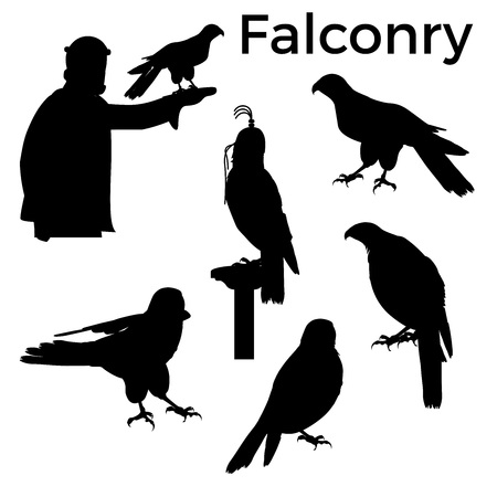 Set of silhouettes birds of prey. Vector illustration isolated on white background.