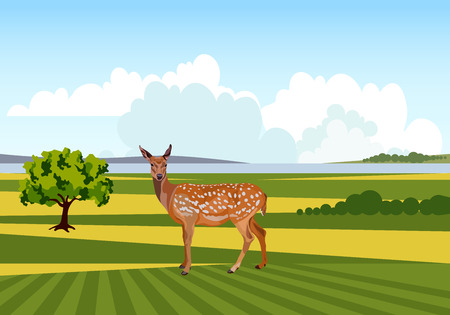 Summer landscape with deer. Vector illustration