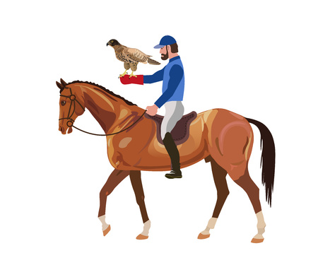 Hunter with falcon on horse. Vector illustration isolated on white background.
