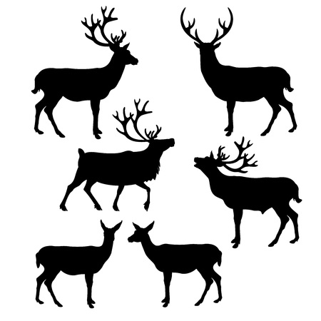 Set of silhouettes deer. Vector illustration isolated on white background.