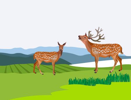 Autumn mountain landscape with deer. Vector illustration.