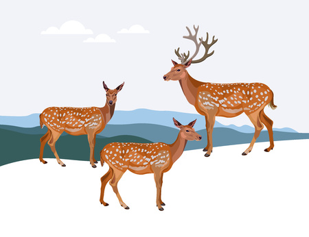 Winter mountain landscape with deer. Vector illustration. Illustration