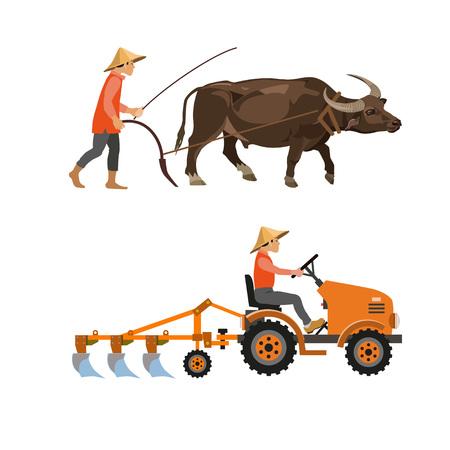 Arando con ganado y tractor agrícola. Ilustración vectorial aislado sobre fondo blanco