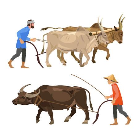 I contadini arano la terra con buoi. Illustrazione vettoriale isolato su sfondo bianco Vettoriali