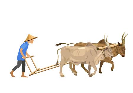 Boer ploegen veld met een paar zeboes. Vector illustratie geïsoleerd op de witte achtergrond