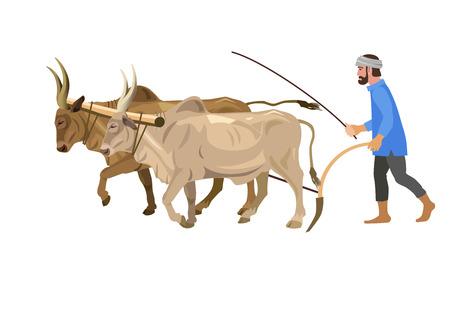 Agriculteur labourant le champ avec un couple de zébus. Illustration vectorielle isolée sur fond blanc