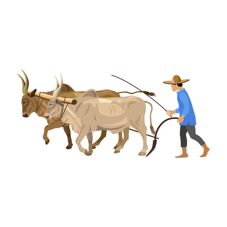 Farmer plowing field with a couple of zebu. Vector illustration isolated on the white background Illustration
