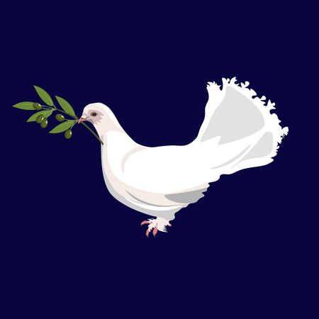 White dove holds in its beak an olive branch. Vector illustration isolated on dark blue background 向量圖像