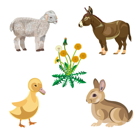 Happy Easter theme with rabbit, donkey, lamb and duckling. Vector illustration isolated on white background