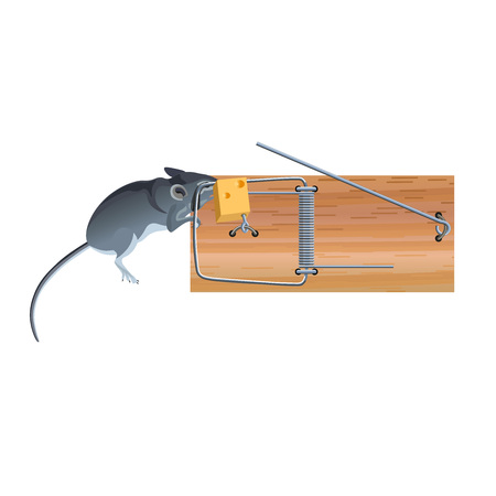 Dead mouse in a mousetrap with cheese. Vector illustration isolated on white background