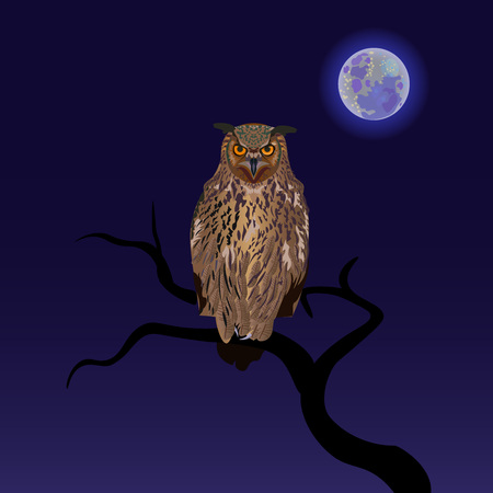 Owl on a branch with full moon background. Vector illustration.