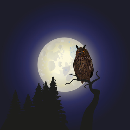 Owl sitting upon a tree branch with a large moon in the background. Vector illustration