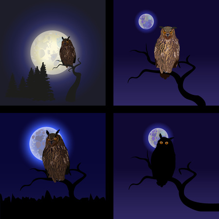 Owls on tree at midnight with full moon. Background for Halloween Illustration
