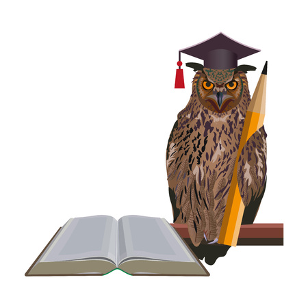 Smart owl in graduation hat with pencil and book. Vector illustration isolated on white background