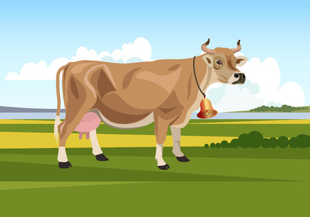 Cow on a summer pasture Vector illustration