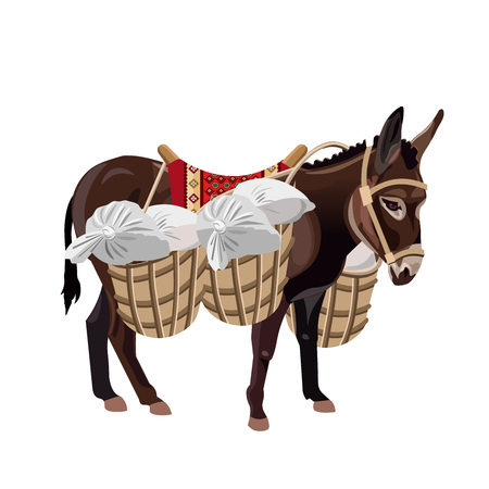 Donkey with a heavy load. Vector illustration isolated on the white background